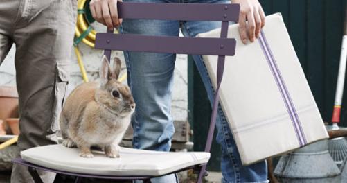 galette de chaise Louise
